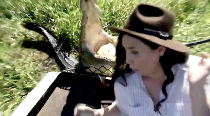 A crocodile named Bonecruncher snaps at 9News Darwin reporter Zarisha Bradley.