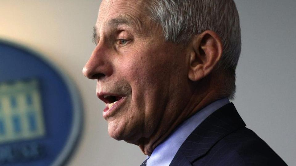 Director of the National Institute of Allergy and Infectious Diseases Dr. Anthony Fauci speaks during a White House press briefing last month. (Photo by Alex Wong/Getty Images)