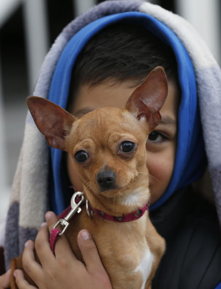 <p>Absel Salazar holds his Chihuahua Luly after fleeing his home in response to an earthquake alarm, in Mexico City, Saturday, Sept. 23, 2017. (Photo: Marco Ugarte/AP) </p>