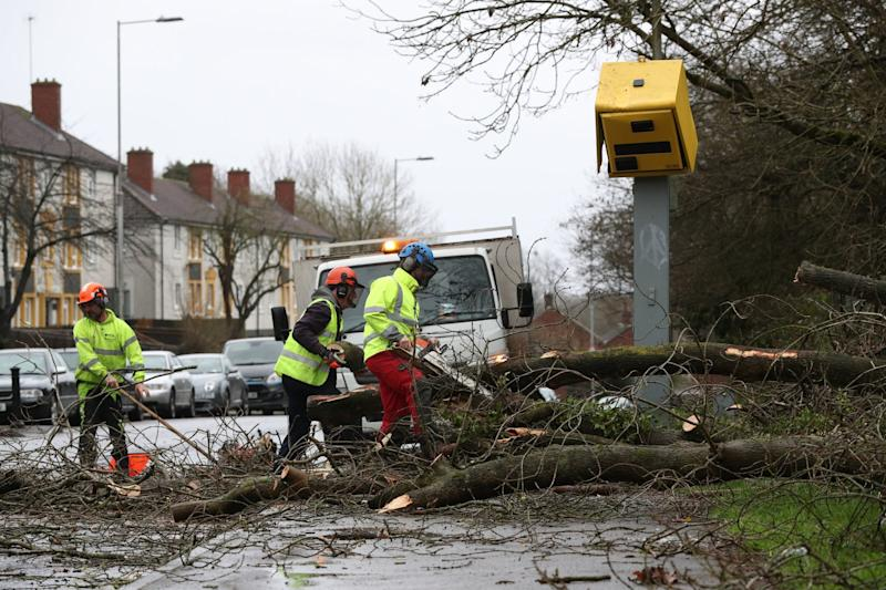 Workmen clear up after tree fell on speed camera in Tilehurst, Reading (PA)
