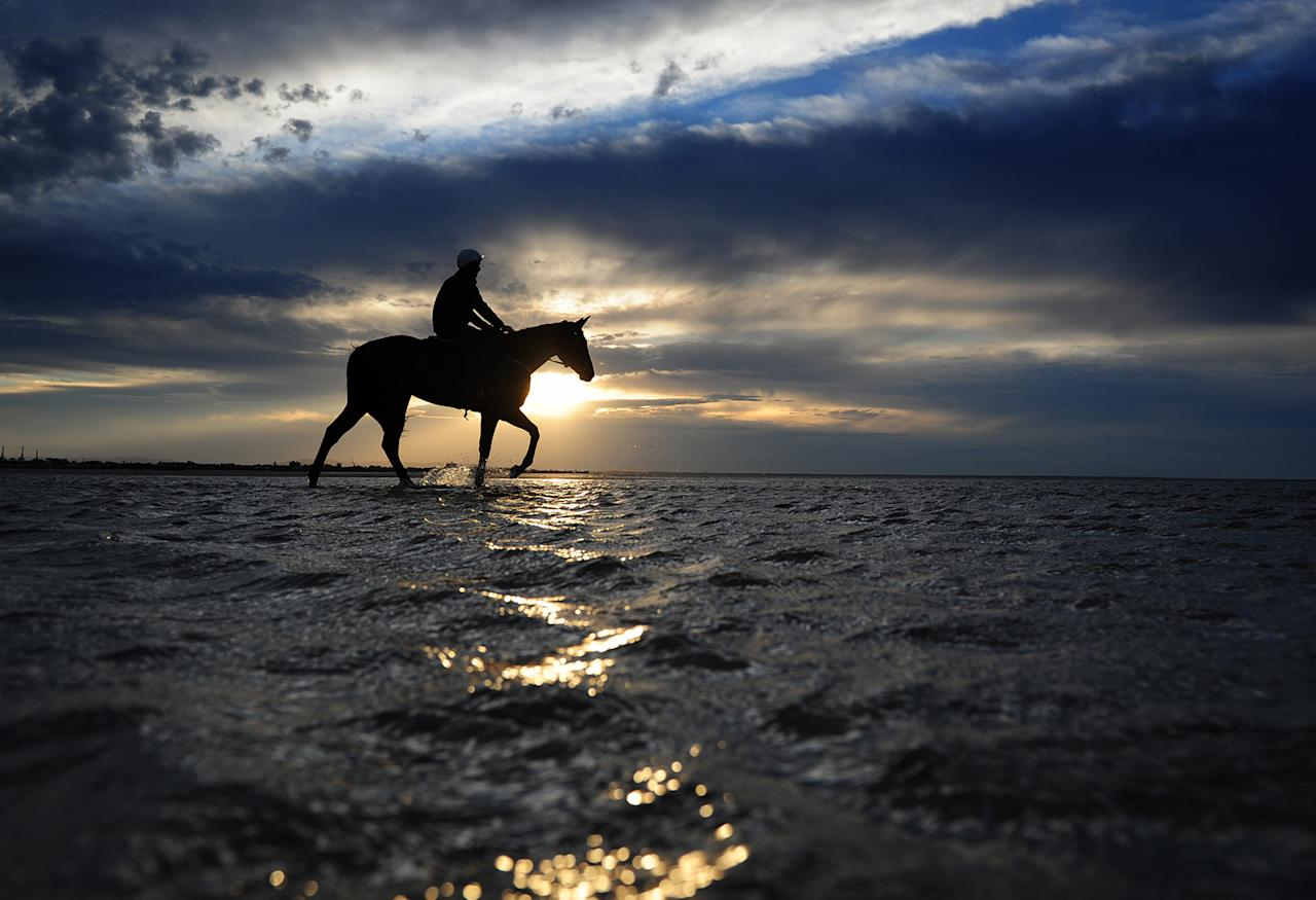<p>Ben Cadden riding Winx in the shallow waters of Altona beach on Oct. 16, 2016 in Melbourne, Australia. The Chris Waller trained Winx is a short price favourite for Saturdays Cox Plate at Moonee Valley. (Photo: Vince Caligiuri/Getty Images) </p>
