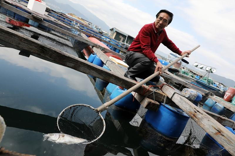 Is Hong Kong's fishing industry being thrown a lifeline and will the farmers take the bait?