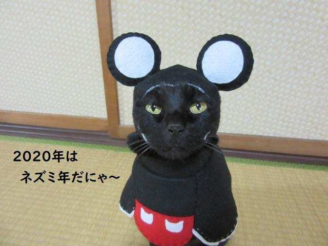 Cat cosplayer from Japan, Chocola, whose owner has hand-made 114 costumes for it, as Mickey Mouse. (Photo: Twitter/@kigurumicyokor1)