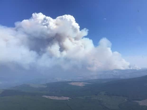 A wildfire burns near Garrison Lake, just 33 kilometres southwest of Princeton, B.C., on Saturday. It was estimated to be nearly 82 square kilometres in size, with 'significant growth' over the previous day, B.C.'s wildfire service said.  (B.C. Wildfire Service/Twitter - image credit)