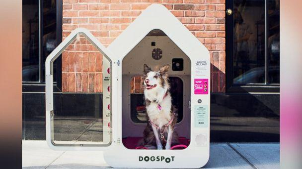 PHOTO: DogSpot is expanding to dozens of cities across the U.S. (DogSpot)