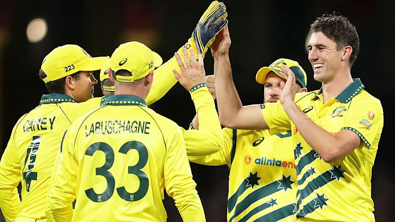 Pictured here, Pat Cummins celebrates with Aussie teammates in an ODI against New Zealand.