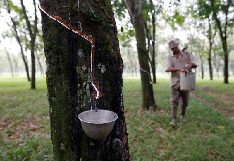 Natural rubber industry in 'crisis' as pandemic depresses demand - association