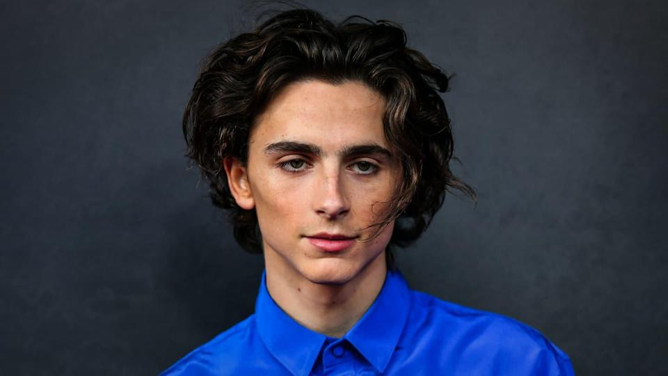 Current favorite, Timothee Chalamet, tapped to play young Willy Wonka