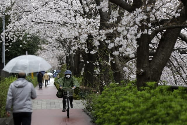 The re-arranged Games could take place in cherry blossom season (Kiichiro Sato/AP)