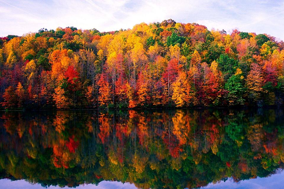 Plum Orchard Lake in the fall