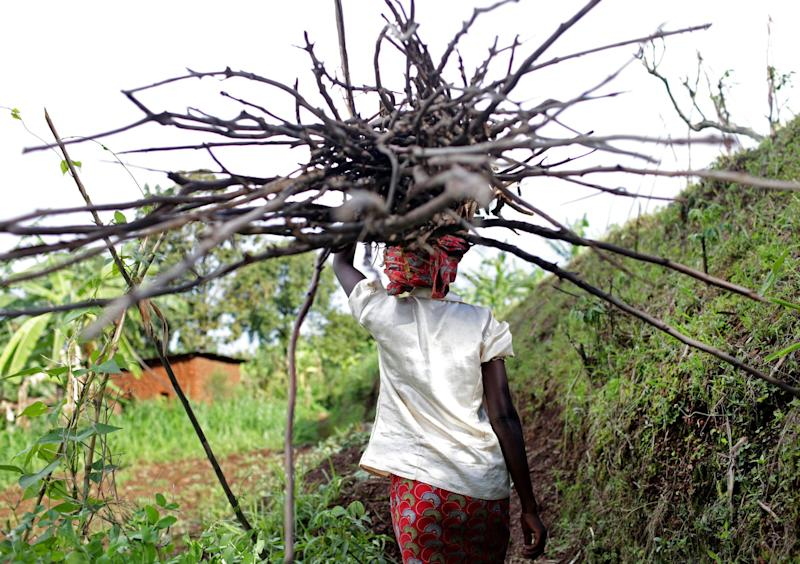 Nyiranzabanita Emeliane, 42, carries wooden sticks used for cooking on November 14, 2017 in Shyorongi, Rwanda. She says she sometimes spends hours per day, at times in faraway corners of the woods, to find what she needs, usually using it to cook sweet potatoes and cassava. (Photograph by Yana Paskova)