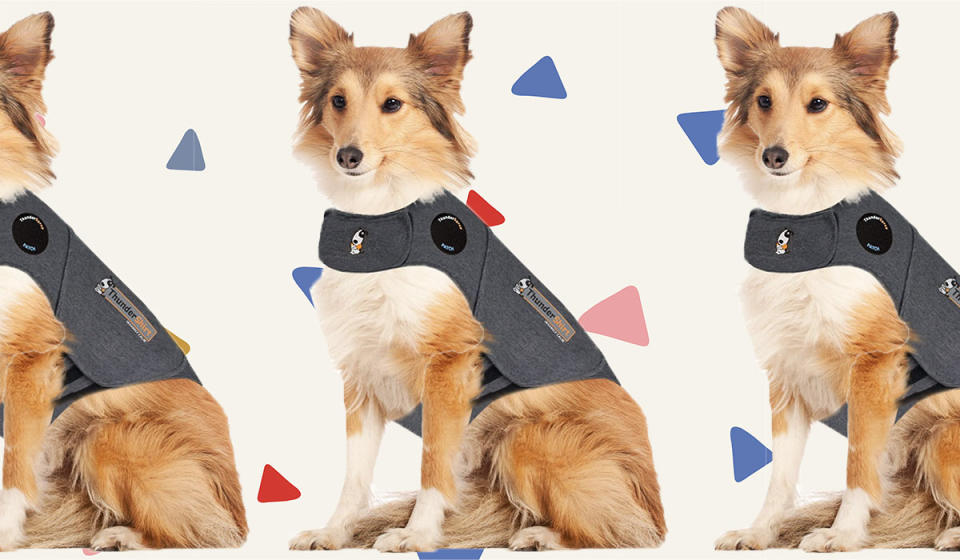 Your pup will love it. (Photo: Amazon)