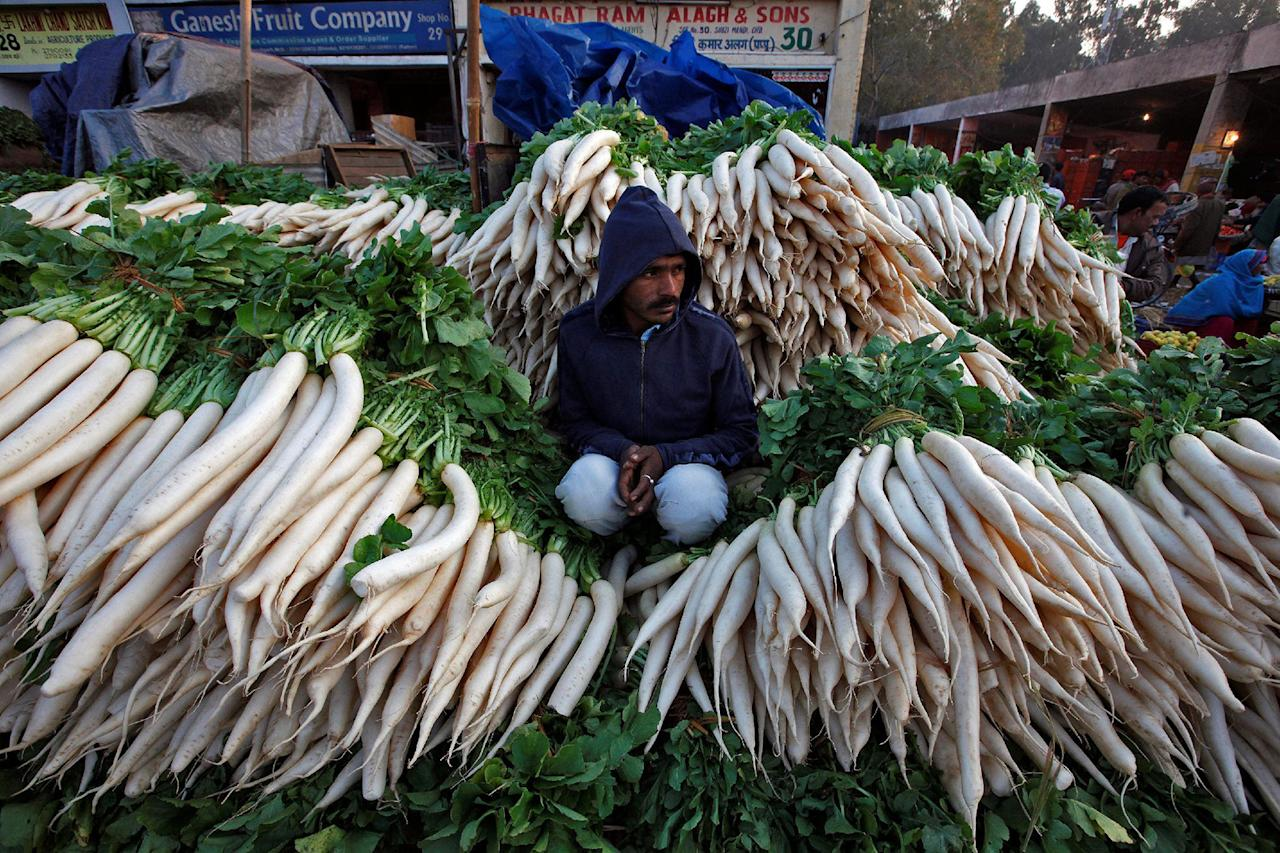 <p>A vendor sits amidst heaps of radishes as he waits for customers at a wholesale vegetable market in Chandigarh, India, Nov. 16, 2016. (Photo: Ajay Verma/Reuters) </p>