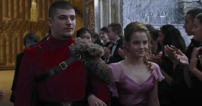 viktor krum harry potter