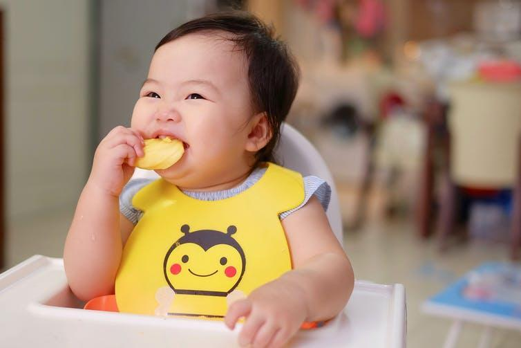 A baby eats a piece of fruit.