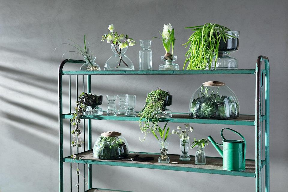 LSA International's Canopy collection is handblown using recycled bottlesEmma Hedges