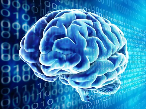 IBM builds working computer chip that mimics the human brain