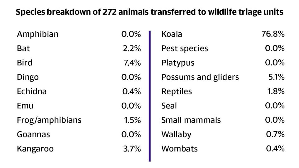 A list of animals transferred to wildlife triage units.