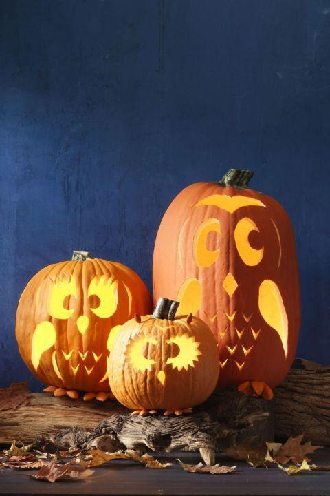 "<p>These pumpkins are a real hoot! <br><strong><br>Make Family of Owls Pumpkins:</strong> Cut a hole in the bottom of three pumpkins, and scoop out pulp and seeds. Trace <a href=""http://wdy.h-cdn.co/assets/15/38/1442607915-mom-owl.png"" rel=""nofollow noopener"" target=""_blank"" data-ylk=""slk:mama owl"" class=""link rapid-noclick-resp"">mama owl</a>, <a href=""http://wdy.h-cdn.co/assets/15/38/1442607881-baby-owl.png"" rel=""nofollow noopener"" target=""_blank"" data-ylk=""slk:baby out"" class=""link rapid-noclick-resp"">baby out</a>, and <a href=""http://wdy.h-cdn.co/assets/15/38/1442607944-dad-owl.png"" rel=""nofollow noopener"" target=""_blank"" data-ylk=""slk:papa owl"" class=""link rapid-noclick-resp"">papa owl</a> faces on pumpkins and carve out. Use nut for the ears and feet, attaching them with hot glue. </p><p><a class=""link rapid-noclick-resp"" href=""https://www.amazon.com/Battery-Included-Wedding-Centerpiece-Decorations/dp/B01COK5IFA?tag=syn-yahoo-20&ascsubtag=%5Bartid%7C10050.g.279%5Bsrc%7Cyahoo-us"" rel=""nofollow noopener"" target=""_blank"" data-ylk=""slk:SHOP MOON LIGHTS"">SHOP MOON LIGHTS</a><br></p>"