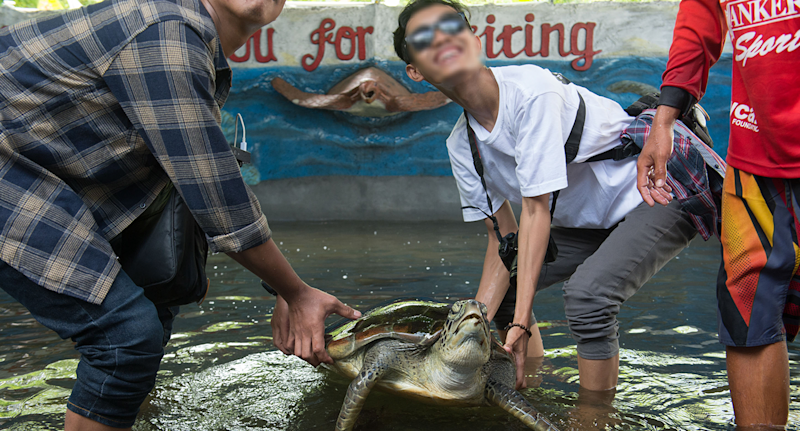 Two tourists lift a sea turtle out of a tank to pose with it.