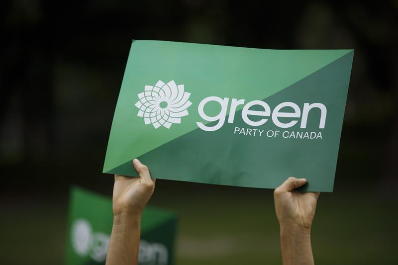 Green party leadership pushes membership roll soars since election
