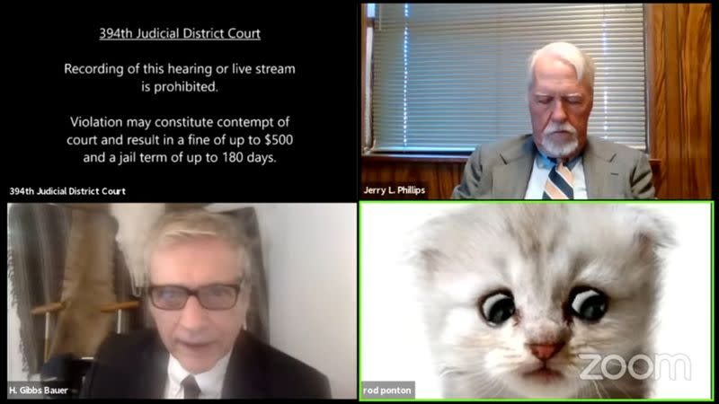Lawyer appears with kitten filter turned on during a virtual court hearing in Texas