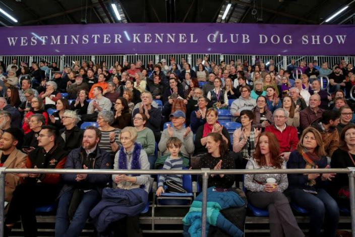 Audience members cheer during the Masters Agility Championship during the Westminster Kennel Club Dog Show in New York