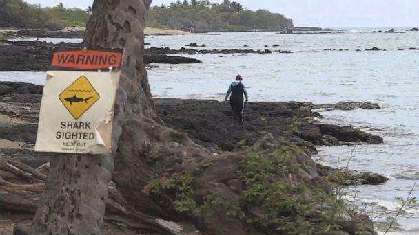 Kimberly Bishop and her husband were kayaking at one of their favorite spots, Anaeho'omalu Bay, when she was attacked and bitten by a shark. (KITV)