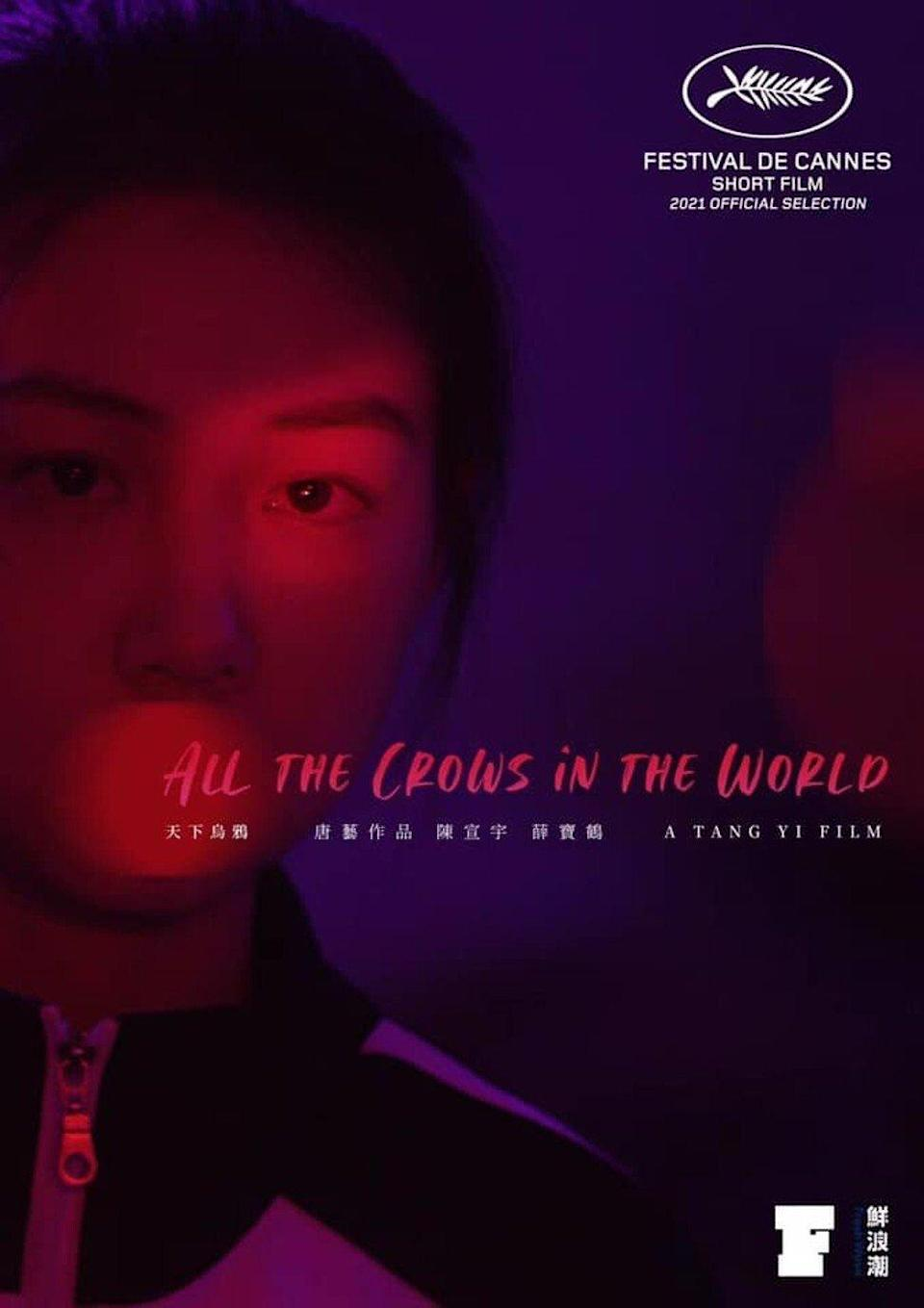 All the Crows in the City follows a teenage student, played by Chen Xuanyu, who is invited to a strange party. Photo: Handout