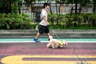 Tokyo's neighbourhood watch pooches are wagging away crime and cuddling away fear