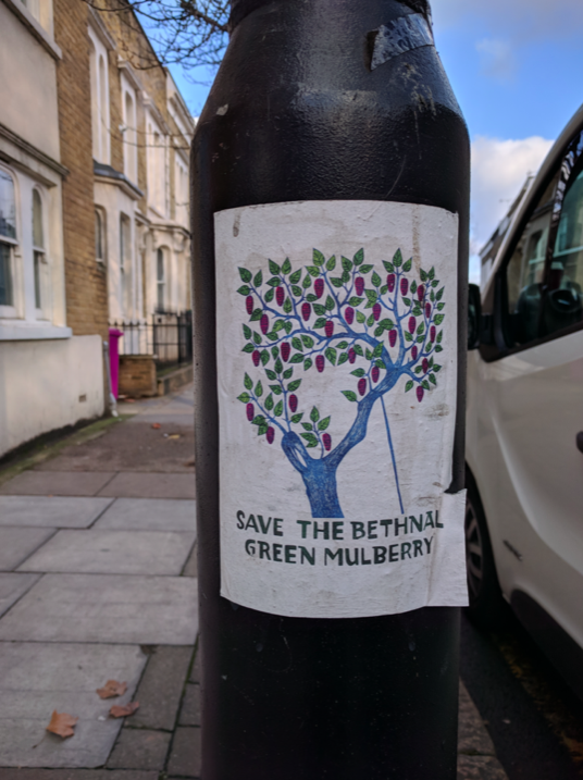 A campaign poster to save the tree on a lamppost in Bethnal Green. (Wikipedia)