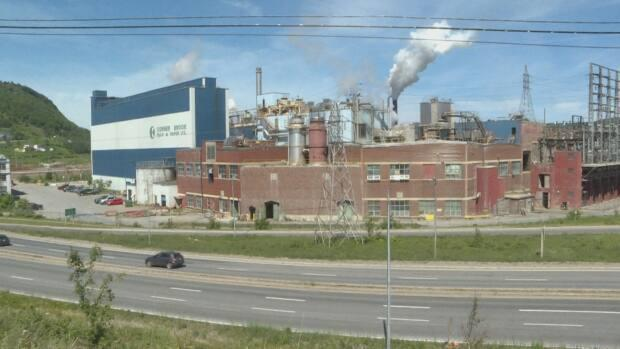 Corner Brook Pulp and Paper will draw on power from Nalcor in a temporary energy exchange.  (Colleen Connors/CBC - image credit)