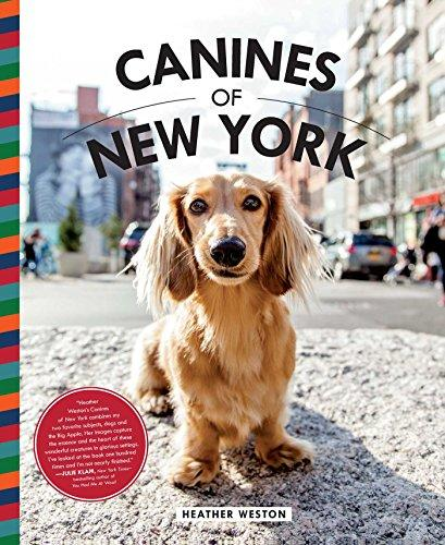 Canines of New York (Amazon / Amazon)