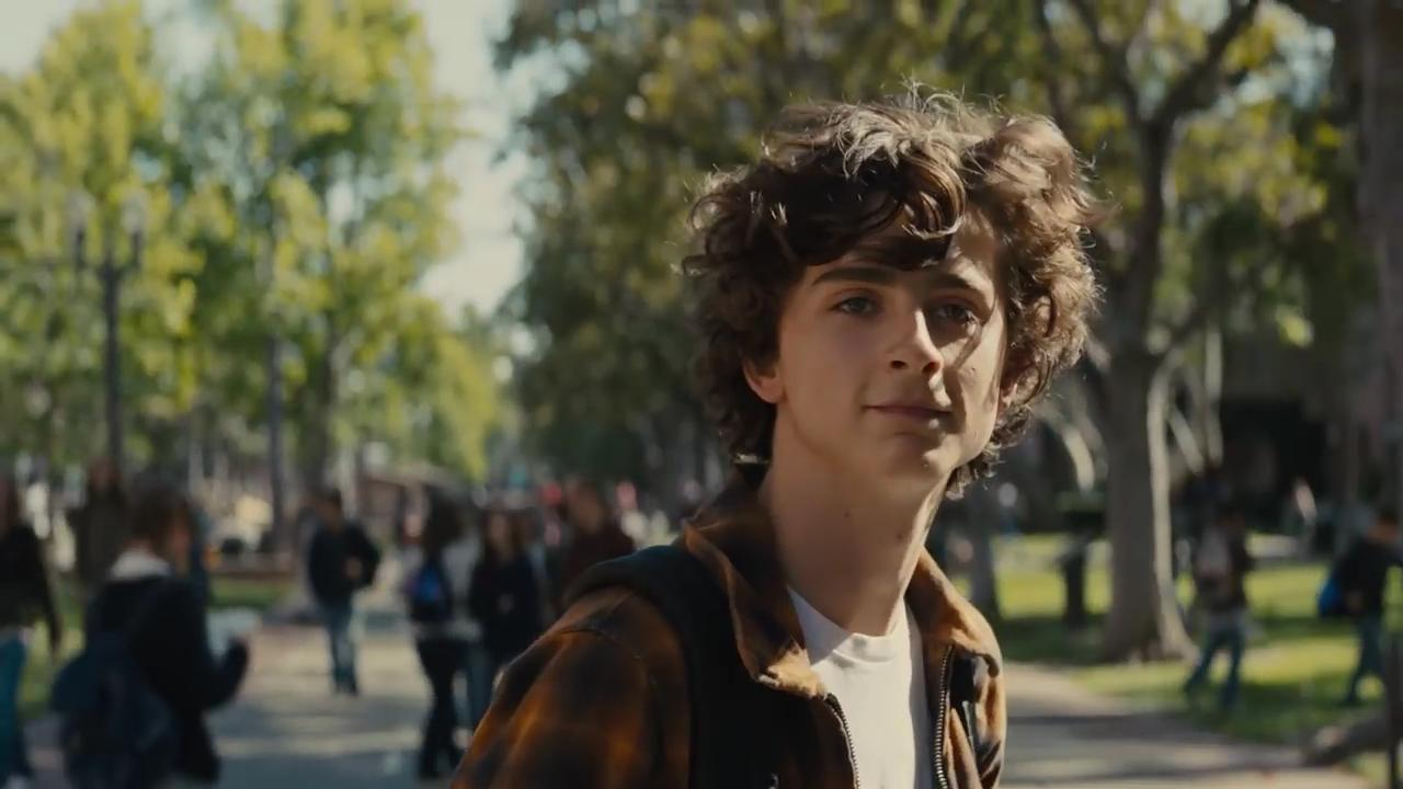 <p>Steve Carell plays New York Times writer David Sheff, who desperately fights to keep his family together as his son Nicholas (Timothee Chalamet) battles a meth addiction. </p>