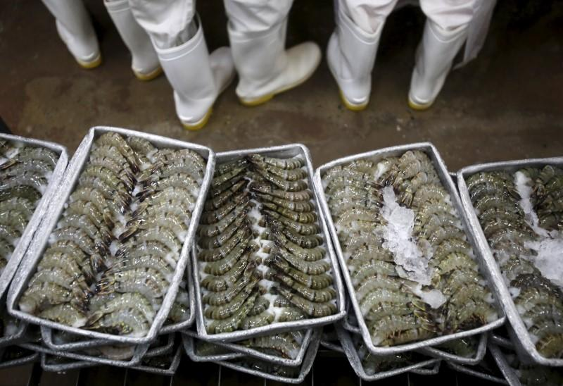 Black tiger shrimps are arranged on ice before being frozen at Cafatex shrimp and Pangasius Catfish factory in Hau Giang