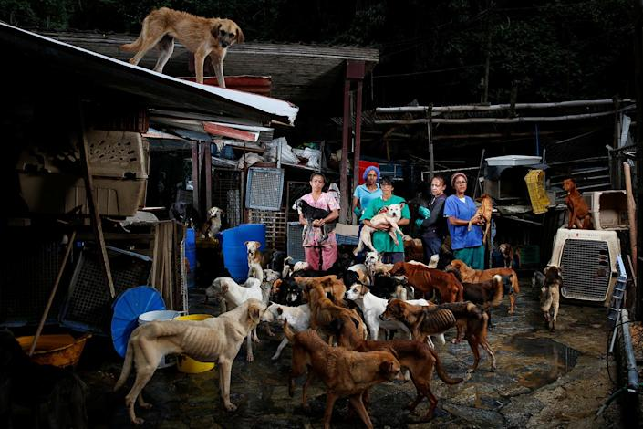 <p>Maria Silva, Milena Cortes, Maria Arteaga, Jackeline Bastidas and Gissy Abello pose for a picture at the Famproa dogs shelter where they work, in Los Teques, Venezuela, August 25, 2016. (REUTERS/Carlos Garcia Rawlins) </p>