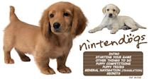 <p>It's still staggering how many copies of <em>Nintendogs</em> were sold. Over 23 million. That puts it in the same league as major titles like<em> Call of Duty 2: Black Ops </em>or <em>Grand Theft Auto IV</em>. At heart a simulation game, players got to raise their very own pup. You visit the kennel, picking from one of the six different breeds available. As soon as you're home, you pick a name, and use the game's voice recognition software to teach your new best friend his or her name. Then it's time to train and bond with your very life-like puppy, and before you know it, you're in love. </p>