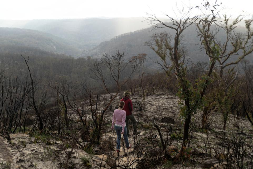 Two people walk through bushfire damaged country in the Blue Mountains.