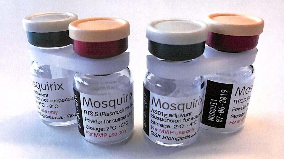 Breezy Explainer: All about Mosquirix, the first malaria vaccine to get WHO backing