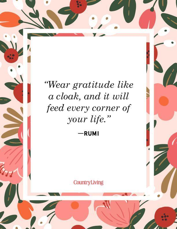 """<p>""""Wear gratitude like a cloak, and it will feed every corner of your life.""""</p>"""