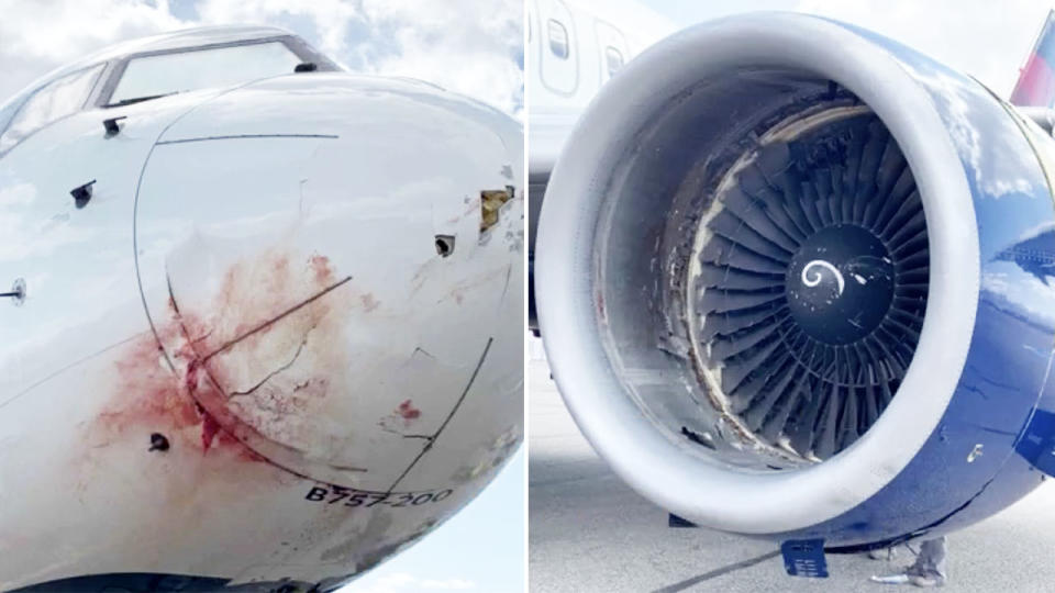 The nose and engine of the plane, pictured with with significant damage.