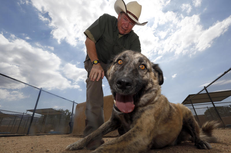 In this Aug. 29, 2013 photo, Leo Grillo poses with Chaos, a 3-year-old dog rescued from Anghanistan, at his DELTA (Dedication & Everlasting Love to Animals) Rescue complex in Acton, Calif. Nearly 35 years ago, Grillo thought he could get people to stop dumping dogs and cats in the forests and deserts of Southern California. After more than three decades, there is no end to the number of animals he finds discarded on the side of the road. Delta Rescue is now the largest no-kill, care-for-life sanctuary in the nation for abandoned pets, home to some 1,500 dogs, cats and horses with 50 employees, a state-of-the-art hospital with full-time veterinarian, and his own fire department. (AP Photo/Reed Saxon)