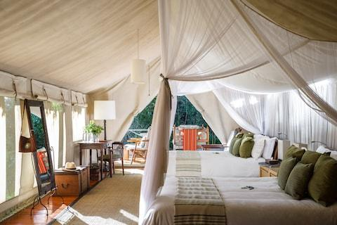 Safari holidays don't get much better - Credit: Sanctuary Retreats