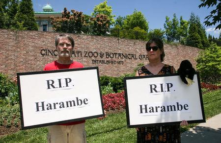 People attend a vigil outside the Cincinnati Zoo and Botanical Gardens, two days after a boy tumbled into its moat and officials were forced to kill Harambe, a Western lowland gorilla, in Cincinnati, Ohio, U.S. May 30, 2016. REUTERS/William Philpott