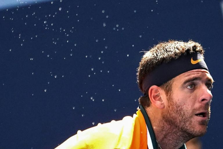 Eyes on the prize: Juan Martin del Potro on his way to a US Open quarter-final victory over John Isner