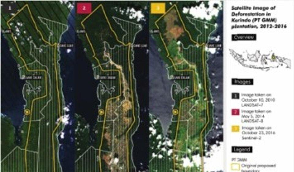 Satellite images of rainforest destruction by Korindo in Indonesia. Photo: Handout