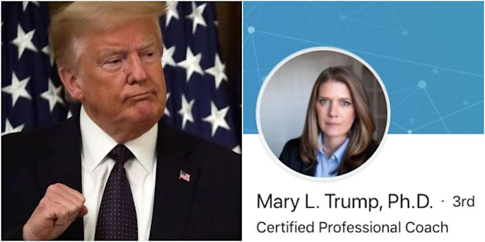 Left: President Donald Trump. Right: A screenshot of a LinkedIn profile believed to belong to his niece, Mary L. Trump.