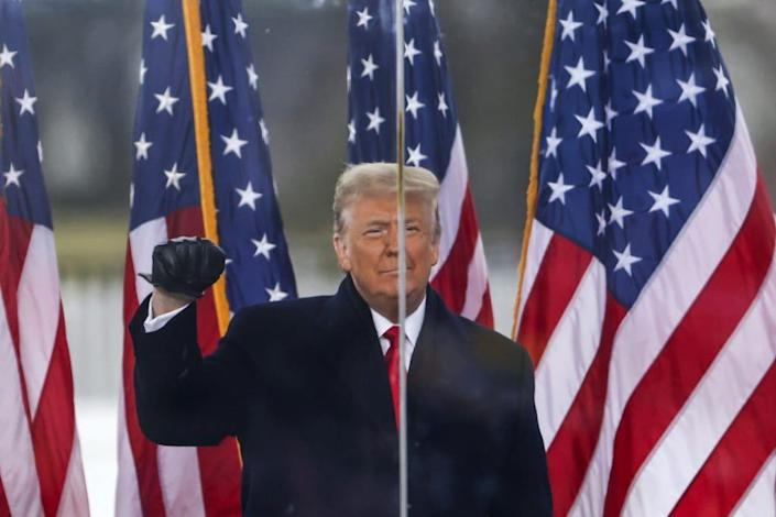 """President Donald Trump speaks at the """"Stop The Steal"""" Rally on January 06, 2021 in Washington, DC. (Photo by Tasos Katopodis/Getty Images)"""