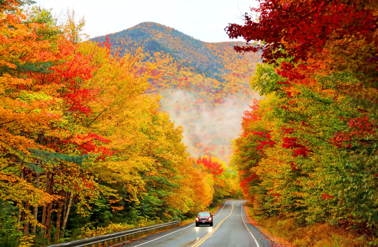 Fall Foliage Smoky Mountains 2020.Fall Foliage Map Will Help You Plan Out Your Leaf Peeping