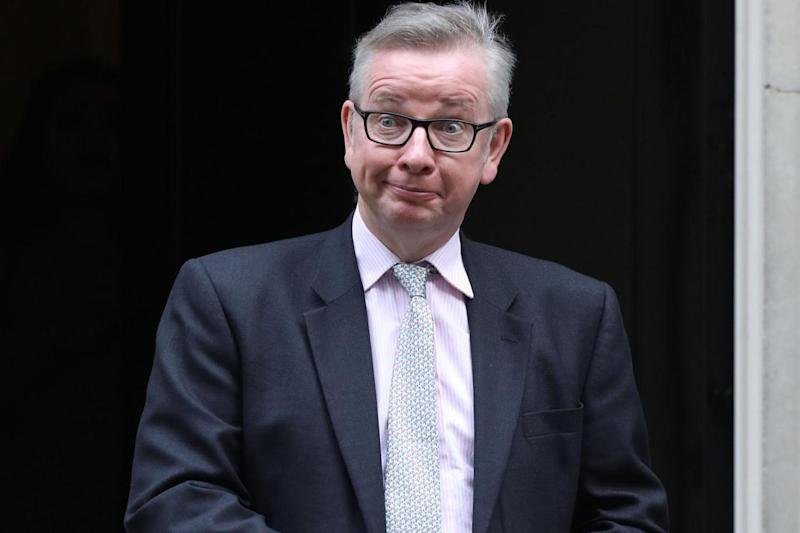 A new vegan champion: Michael Gove (Getty Images)